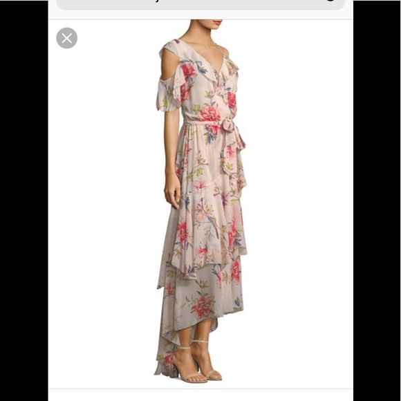 21eb6b416854f Authentic Joie Criseta dress in Rosewater color
